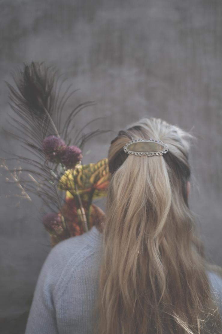 IMG_hårklemme